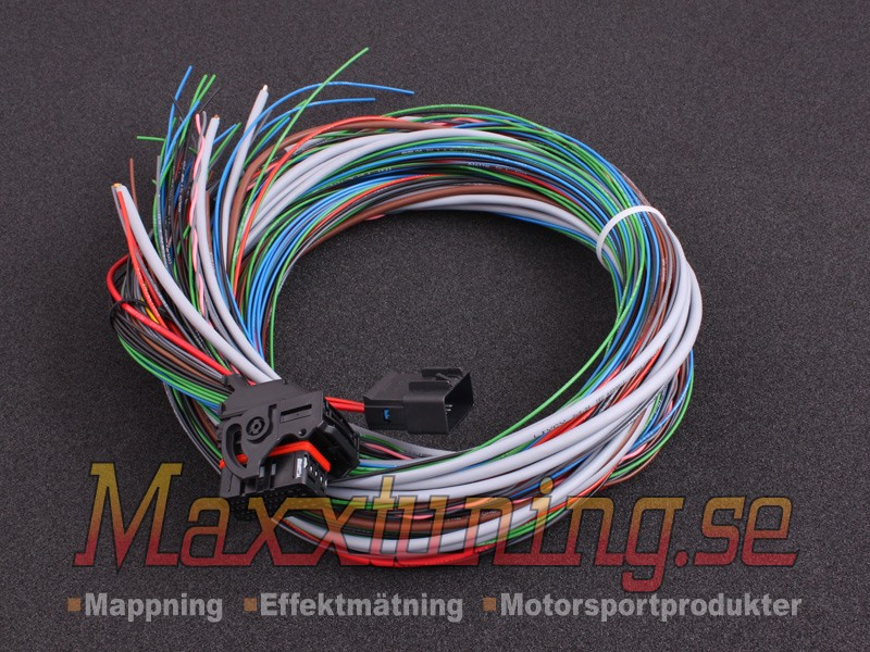 MaxxECU V1/RACE/PRO flying lead wiring harness connector 1