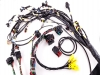 Terminated engine harness - GM LS no accessories